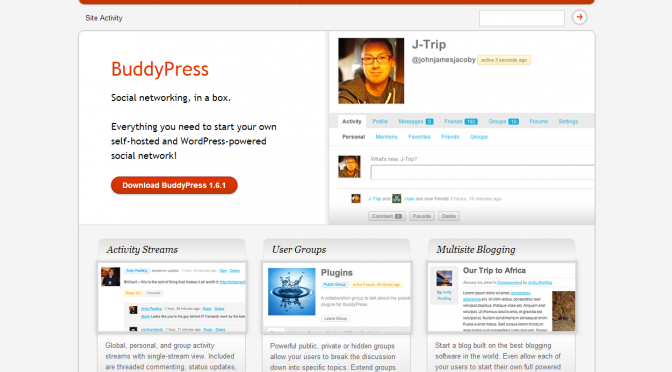 BuddyPress.org screenshot