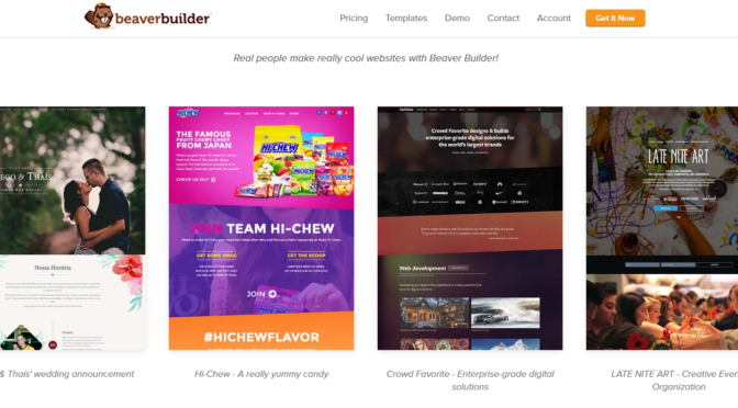 Examples of sites built with Beaver Builder